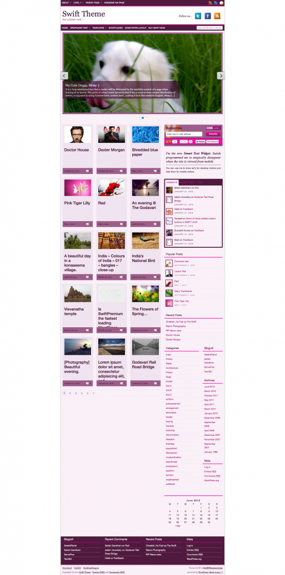 Mazine layout with Sayuri color scheme
